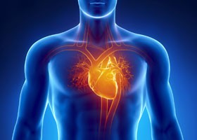 Как курение влияет на сосуды? | Воздействие никотина на сердце курильщика