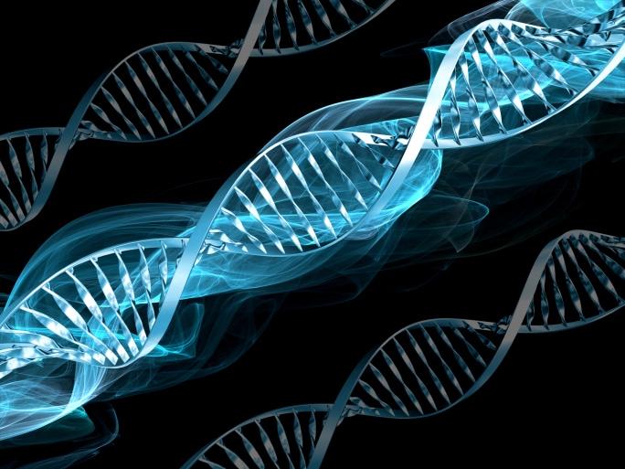 Генетика