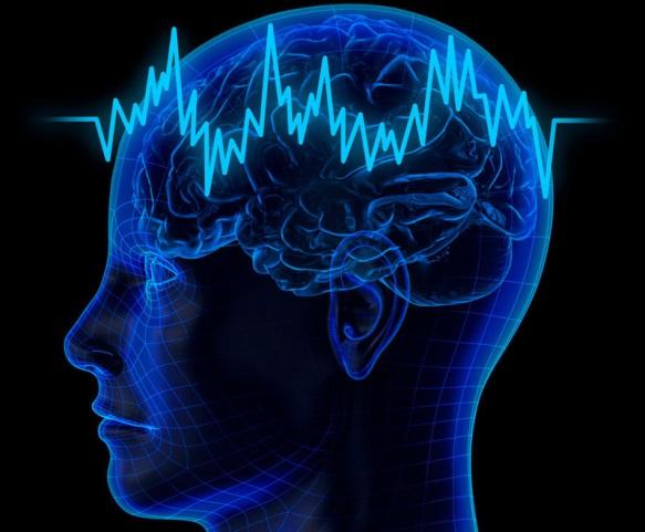 Как быстро восстанавливается мозг: работоспособность и настроение